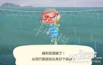 《集合啦动物森友会》潜水怎么抓东西 动森潜水抓鱼技巧
